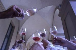 Colori del vino - salone del Gusto